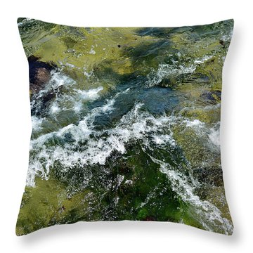 A Sparkling Ocean Palette Throw Pillow