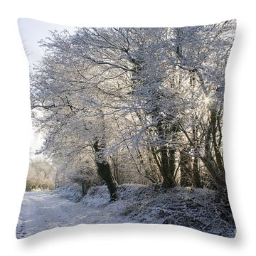 A Sparkling Winter Day Throw Pillow by Sophie De Roumanie