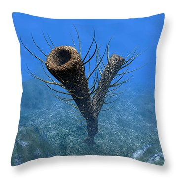 A Species Of Pirania, A Primitive Throw Pillow by Walter Myers
