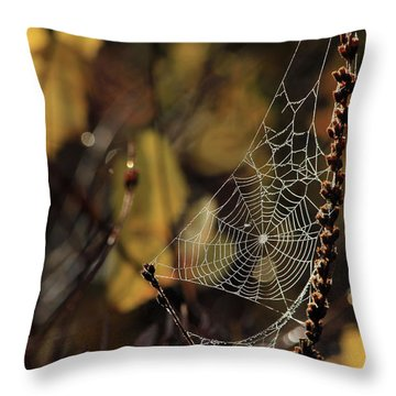 A Spiders Creation Throw Pillow by Karol Livote