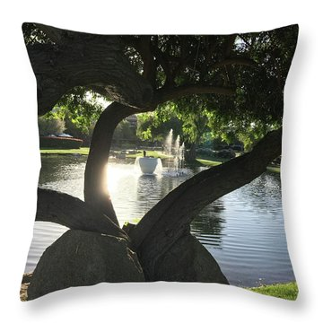 A Splash Throw Pillow