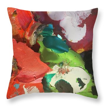 Throw Pillow featuring the photograph A Splash Of Colour by Paula Brown
