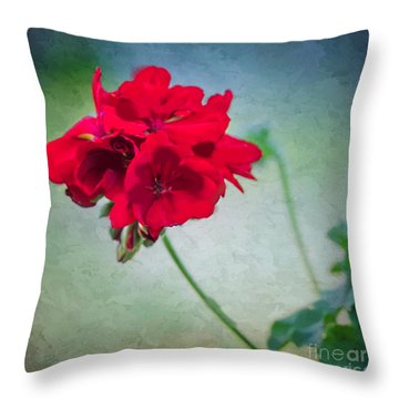 Throw Pillow featuring the photograph A Splash Of Red by Betty LaRue