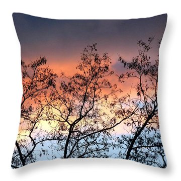 Throw Pillow featuring the photograph A Splendid Silhouette by Will Borden