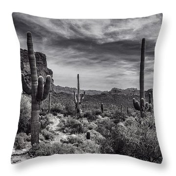 Throw Pillow featuring the photograph A Morning Hike In The Superstition In Black And White  by Saija Lehtonen