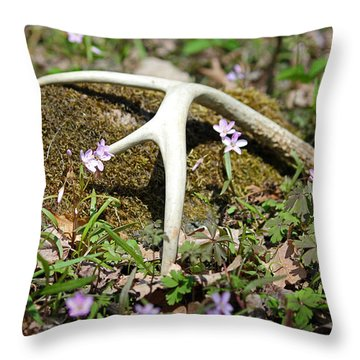 A Spring Treasure Throw Pillow