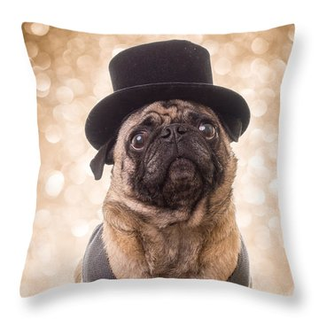 Throw Pillow featuring the photograph A Star Is Born - Dog Groom by Edward Fielding