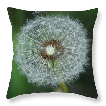 Throw Pillow featuring the photograph A Star Leaves Home by Ben Upham III