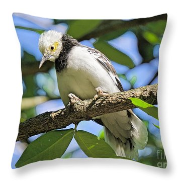 A Starling To Remember Throw Pillow