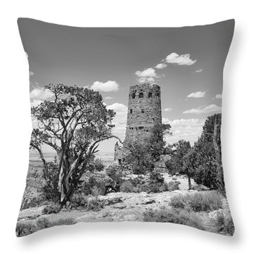 A Story Preserved In Stone Throw Pillow