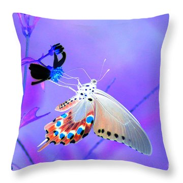 A Strange Butterfly Dream Throw Pillow by Kim Pate