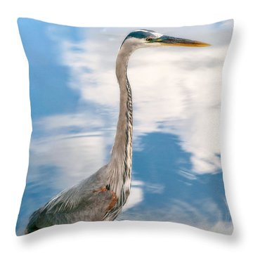 Throw Pillow featuring the photograph A Stroll Among The Clouds by Christopher Holmes
