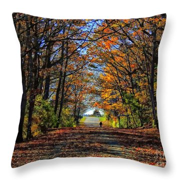 A Stroll Through Autumn Colors Throw Pillow by Marcia Lee Jones