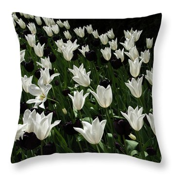 A Study In Black And White Tulips Throw Pillow