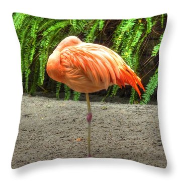 A Study In Pink Throw Pillow by Michael Garyet