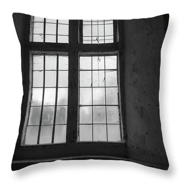A Study Of Windows Throw Pillow
