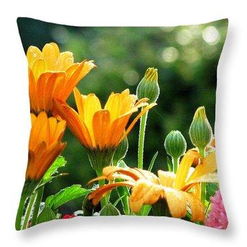 A Summer Celebration Throw Pillow by Angela Davies