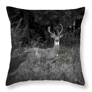 A Summer Day Throw Pillow