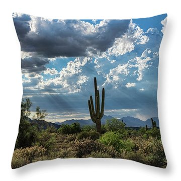 Throw Pillow featuring the photograph A Summer Day In The Sonoran  by Saija Lehtonen