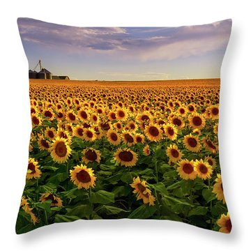 A Summer Evening In Rural Colorado Throw Pillow