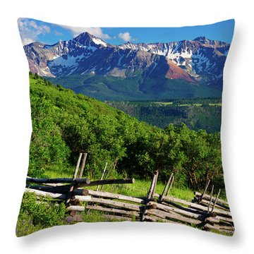 Throw Pillow featuring the photograph A Summer In Telluride by John De Bord