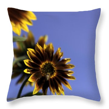 A Summer's Day Throw Pillow