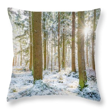 Throw Pillow featuring the photograph A Sunny Day In The Winter Forest by Hannes Cmarits