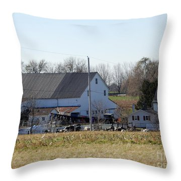 A Sunny November Afternoon Throw Pillow