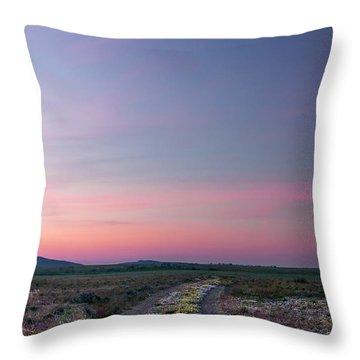 A Sunrise Path Throw Pillow by Leland D Howard