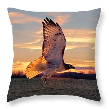 Throw Pillow featuring the photograph A Sunset Flight by B Wayne Mullins