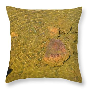 Throw Pillow featuring the photograph A Superior Bulls-eye by Sandra Updyke