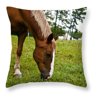 A Sweet September Throw Pillow