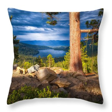 A Swing With A View Throw Pillow