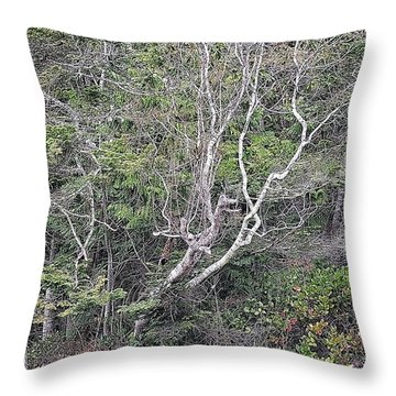 A Tanglewood Throw Pillow
