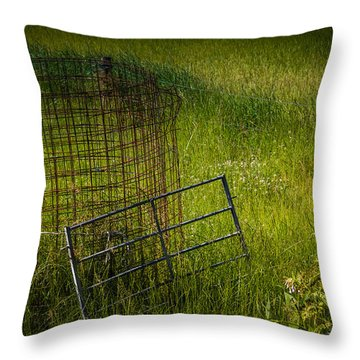 A Task Long Forgotten Throw Pillow