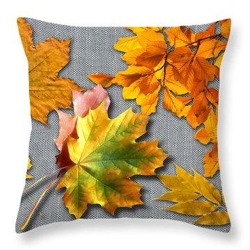 A Taste Of Fall Throw Pillow by Doreen Whitelock