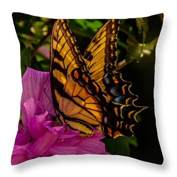 A Taste Of Pink  Throw Pillow