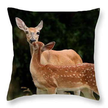 A Tender Moment Throw Pillow by Sheila Brown