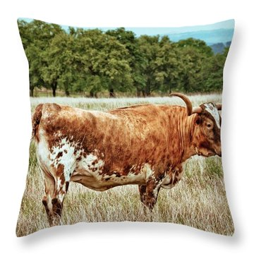 Throw Pillow featuring the photograph A Texas Legend by Linda Unger