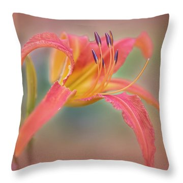 A Thing Of Beauty Lasts Only For A Day. Throw Pillow