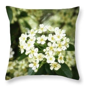 A Thousand Blossoms 3x2 Throw Pillow