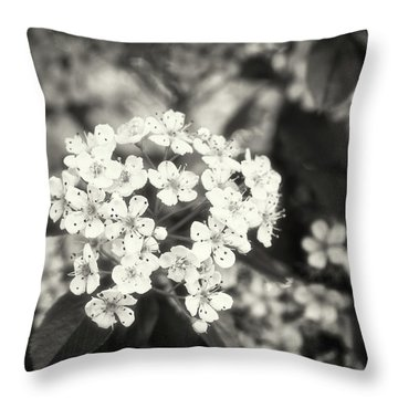 A Thousand Blossoms In Sepia 3x4 Flipped Throw Pillow