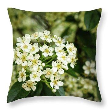 A Thousand Blossoms Throw Pillow