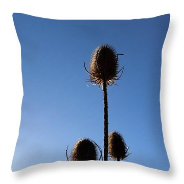 A Thriving Trio 2 Throw Pillow