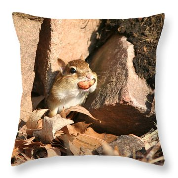 A Tight Fit Throw Pillow