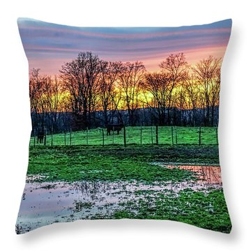 A Time For Reflection Throw Pillow by Jeffrey Friedkin