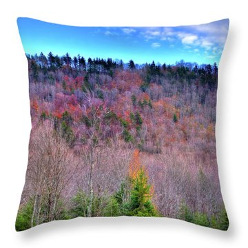 Throw Pillow featuring the photograph A Touch Of Autumn by David Patterson