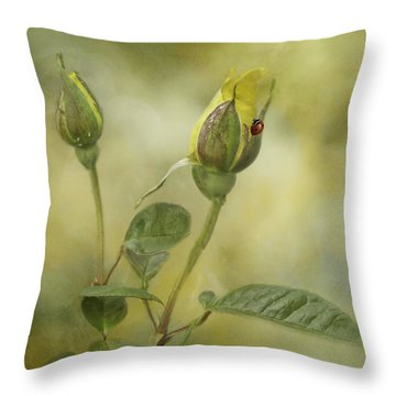 A Touch Of Class Throw Pillow