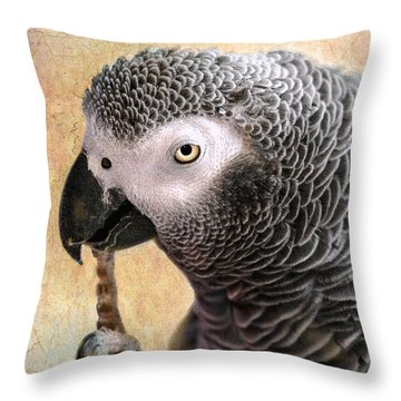 Throw Pillow featuring the photograph A Touch Of Grey 11 by Betty LaRue