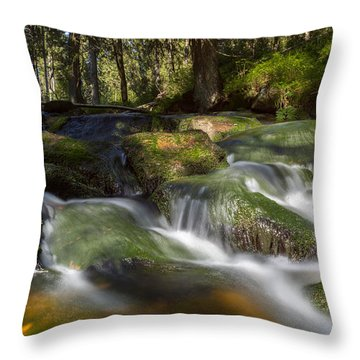 A Touch Of Light Throw Pillow